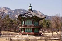 margreet takken korea